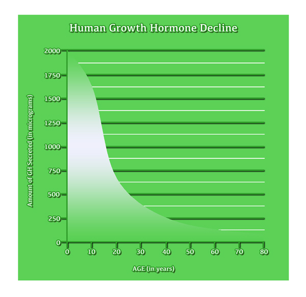 growth hgh chart hormone amino acids