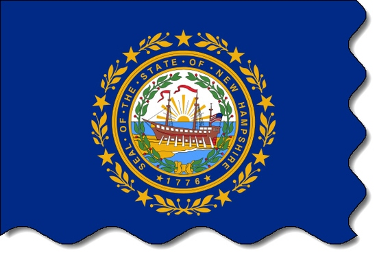 New Hampshire state flag, medical clinics