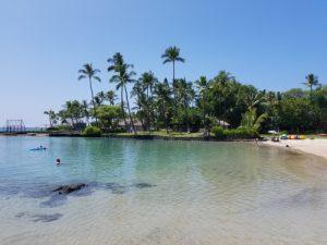 Hawaii medical clinics 300x225